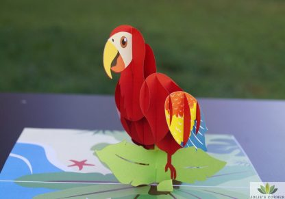 Parrot-Pop up card